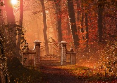 105198308-a-gothic-gate-blocking-a-foot-path-in-a-beautiful-autumn-forest-3d-render-painting.jpg